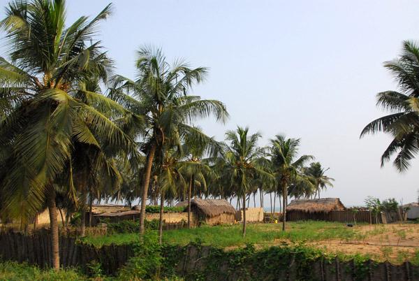 Huts along the beach, Grand Popo