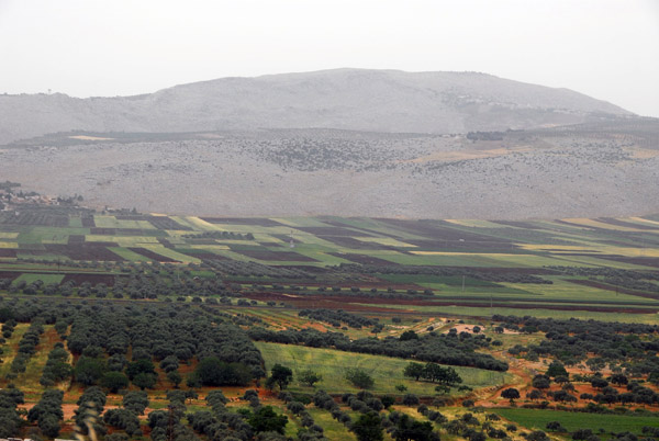 Fertile valley, Idlib Province, Syria