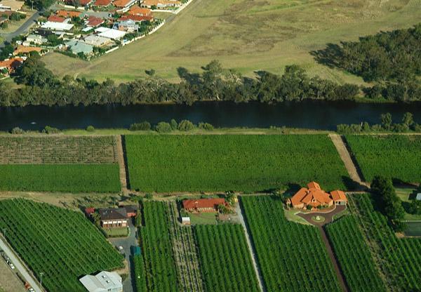 Vineyards along the Swan River, Caversham, Western Australia