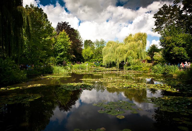 Lily Pond at Monets Garden