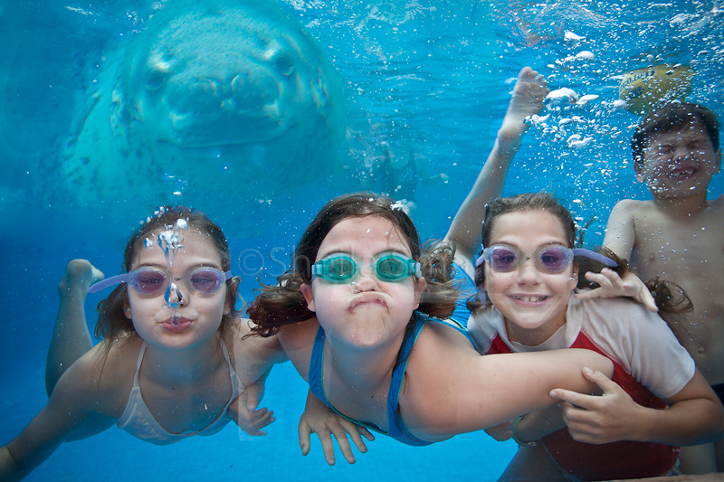 Kids with leopard seal