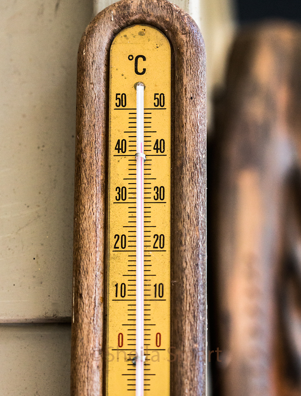 Forty three degrees C in the shade