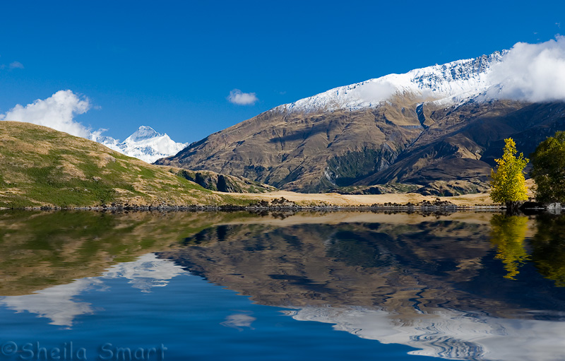 Glendhu Bay, Lake Wanaka with snowcapped Mt Aspiring in background left