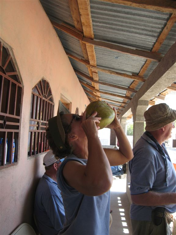 drinking fresh coconut juice