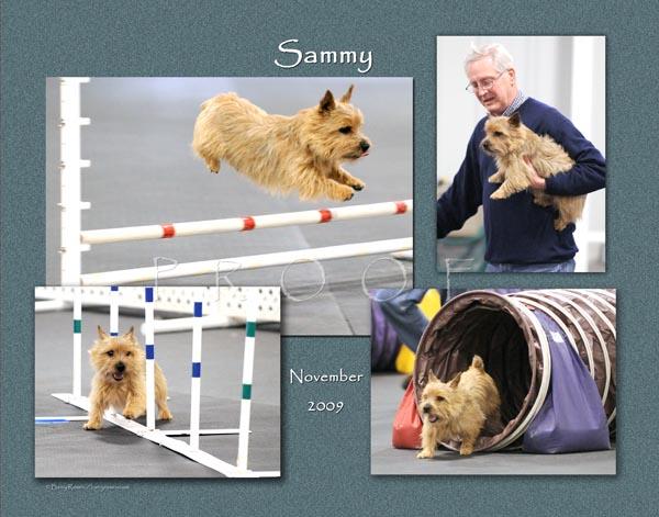 Krantz 11x14 Sammy