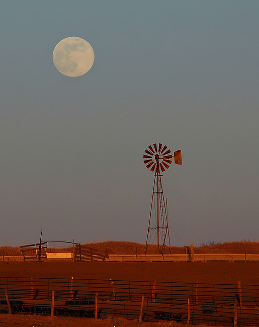 Moon & Windmill