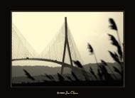 Normandy bridge (1)