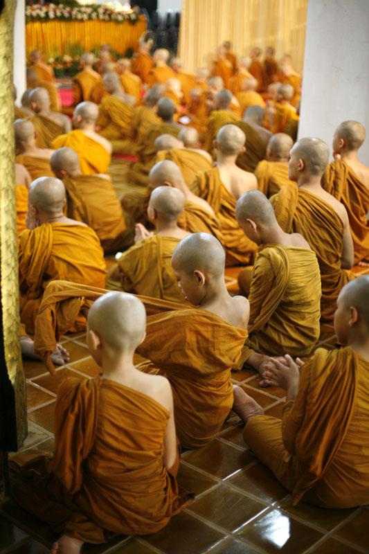 Sea of Monk Kids.web.jpg