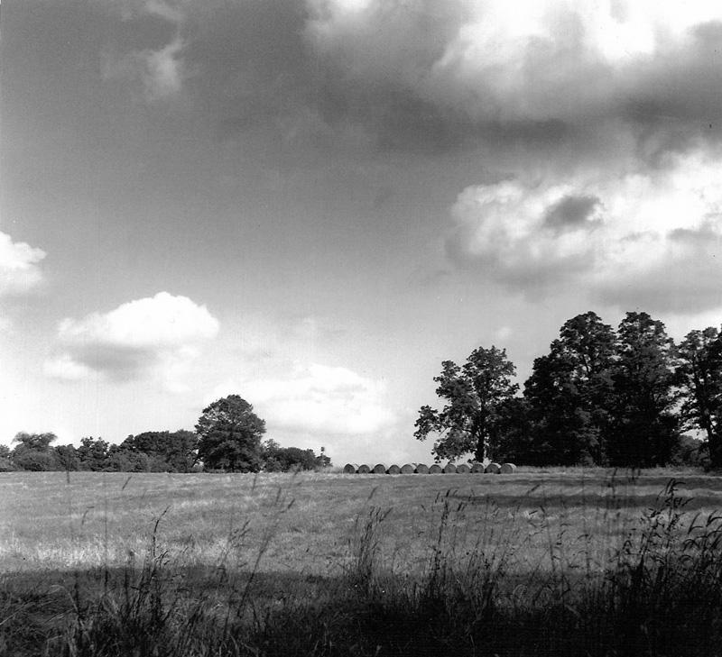 Field in Tewksbury, NJ
