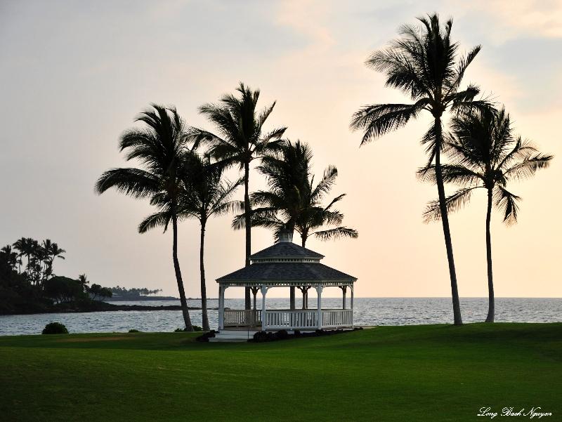 Hawaiian evening, Pauoa, Hawaii