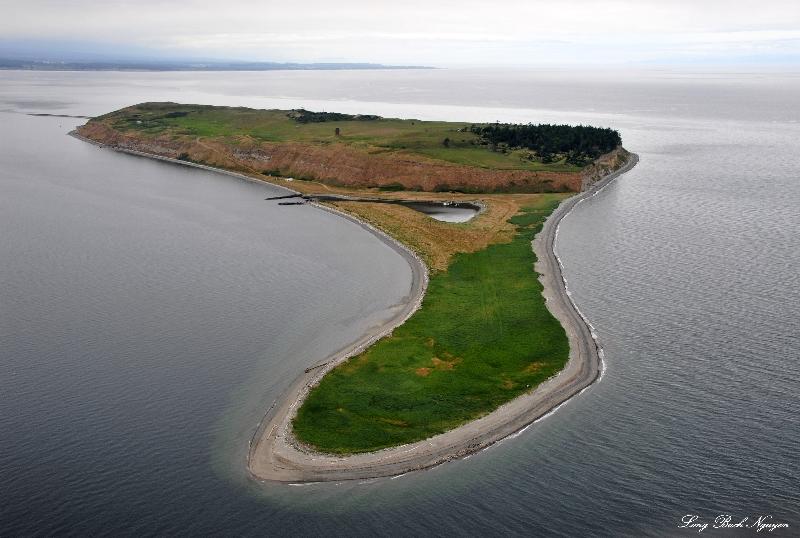 Protection Island, Strait of Juan de Fuca, Washington