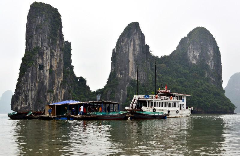 Floating Village, Ha Long 10 Junk,  Ha Long Bay, Vietnam
