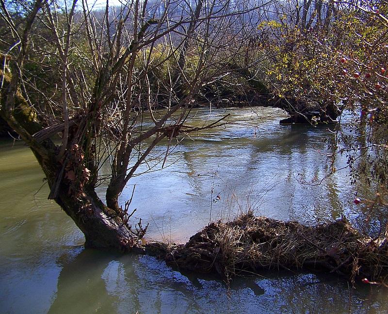 Winter Rain Overflows the River