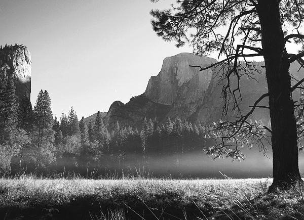 Sunrise - meadow #2769-600-b&w (by request)