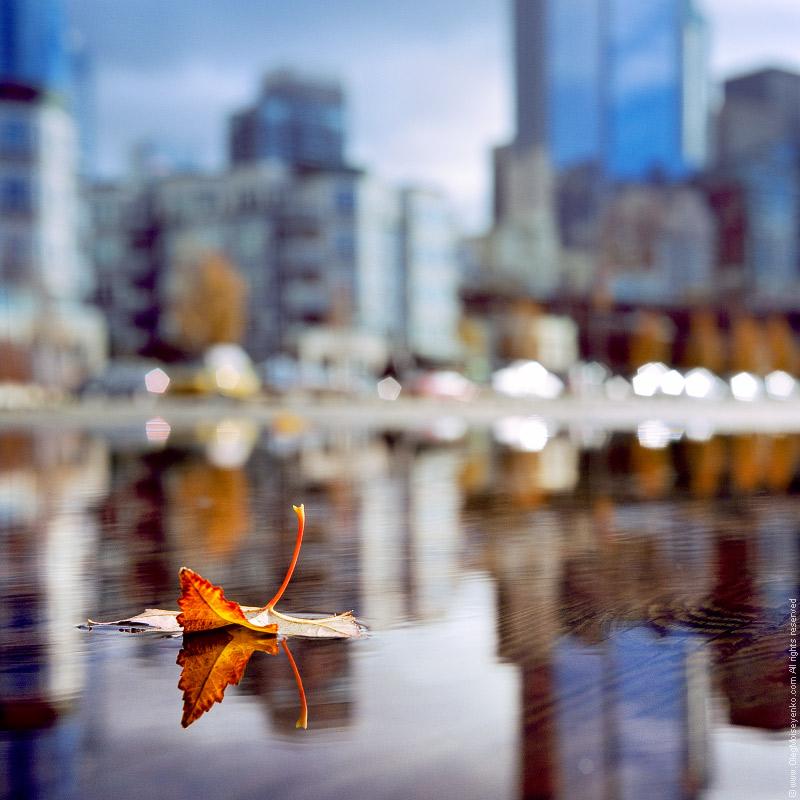 Pier reflection, Seattle, WA
