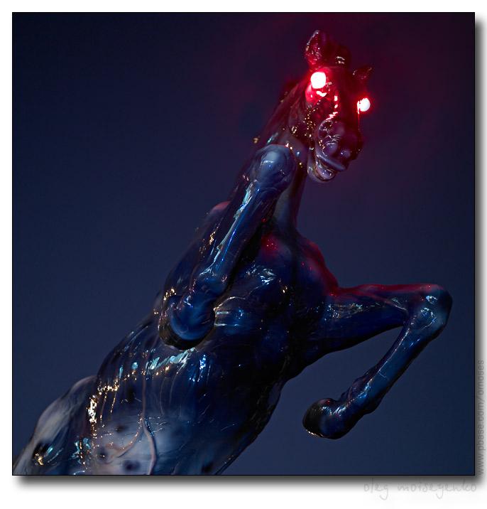 Devils Black Stallion