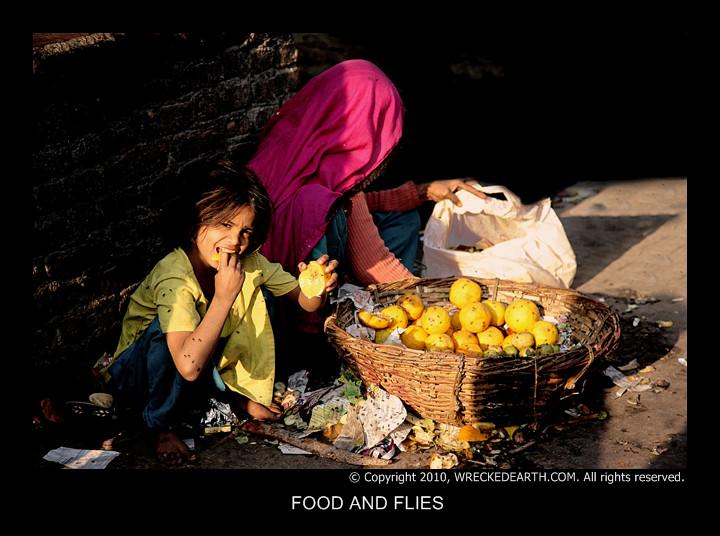 FOOD AND FLIES.jpg