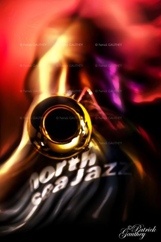jazz 7729.jpg