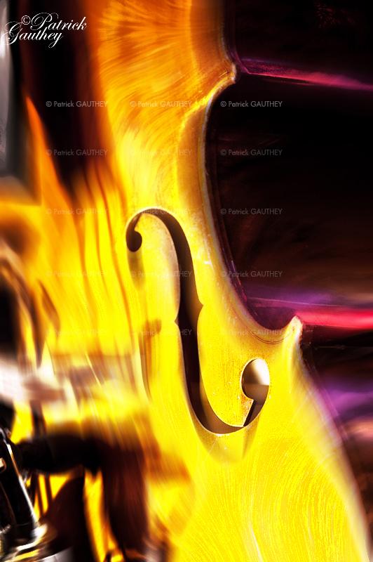 jazz 8791.jpg