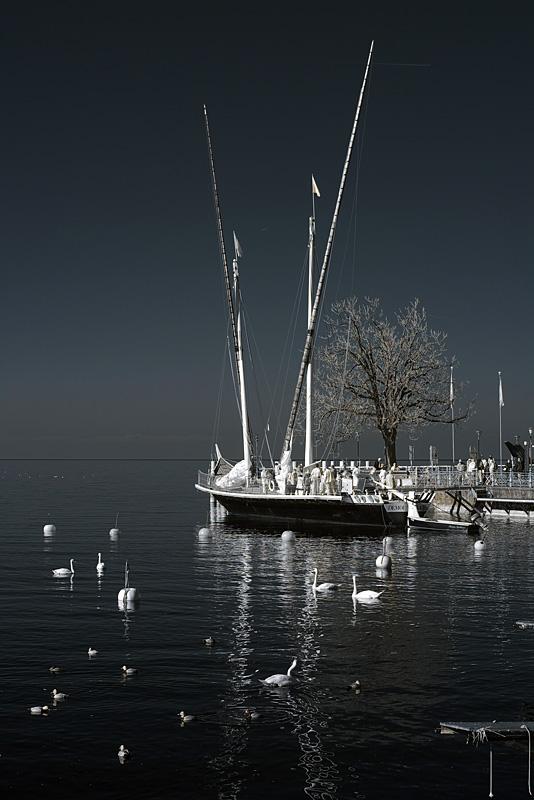Barque La Demoiselle