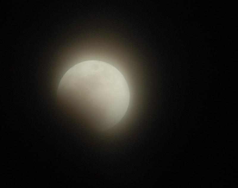eclipse of the moon - beginning _DSC0653.jpg