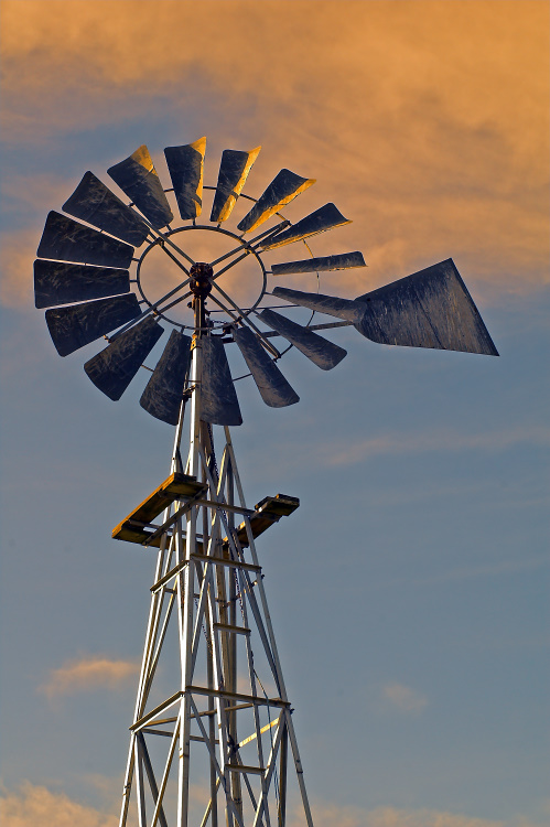 Windmill in the Dusk