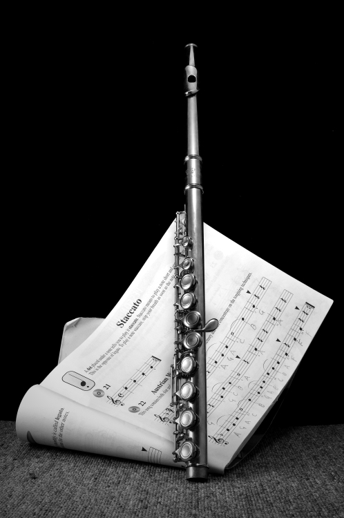 Flute Staccato ~*