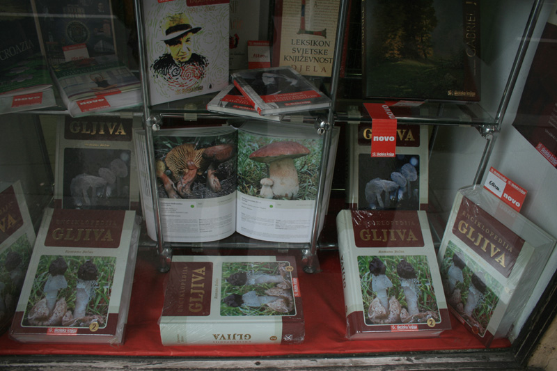 bookstore window, Masarykova Street, Zagreb