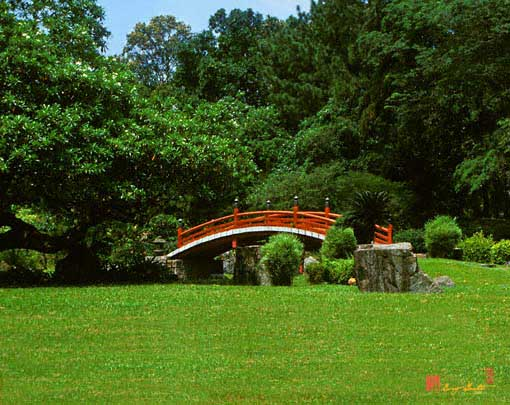 Japanese Garden Bridge and Stone (21M)