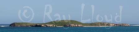Lancelin Island