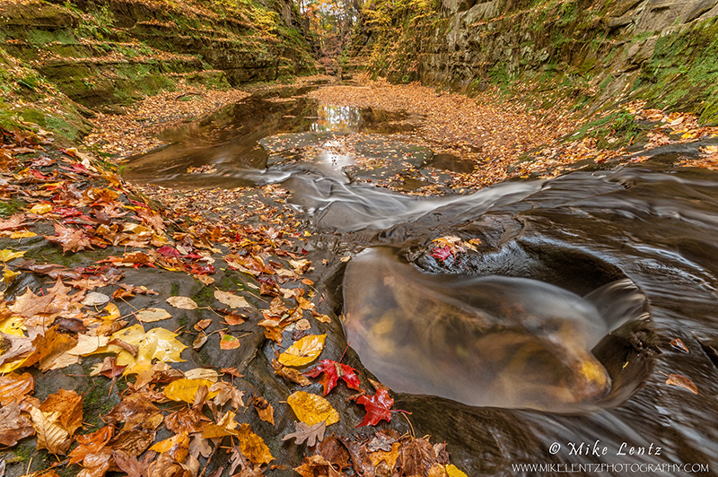 Autumns Echo