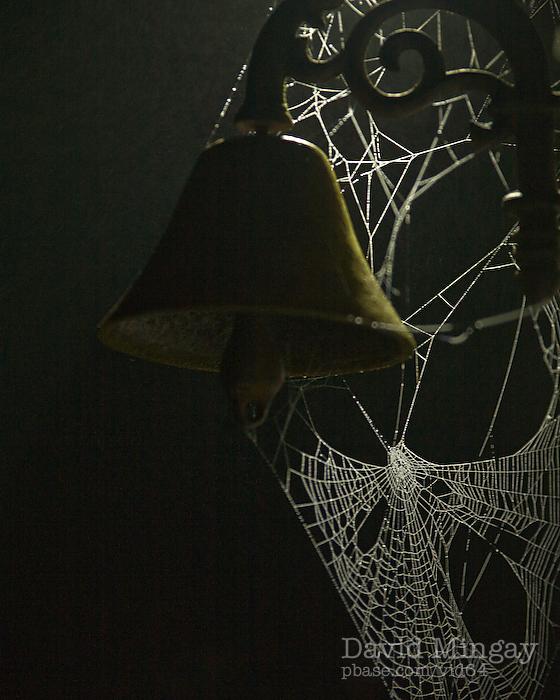 Sep 25: Web