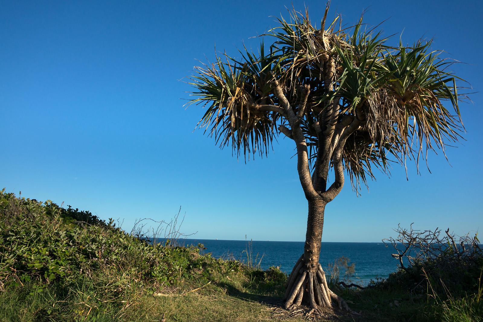 Mooloolaba, Sunshine Coast.