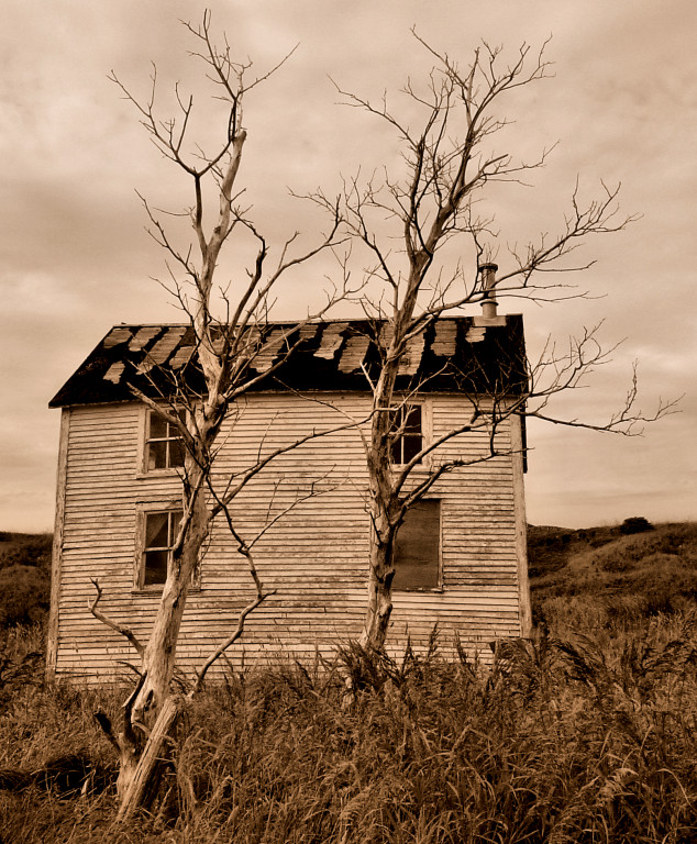 Abandoned House in Keels, Newfoundland<br>**WINNER**