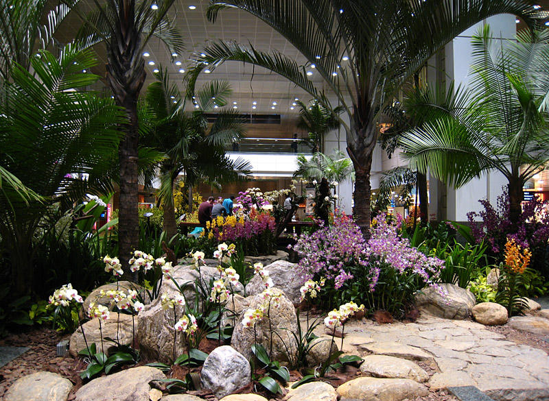 Orchid garden singapore wedding