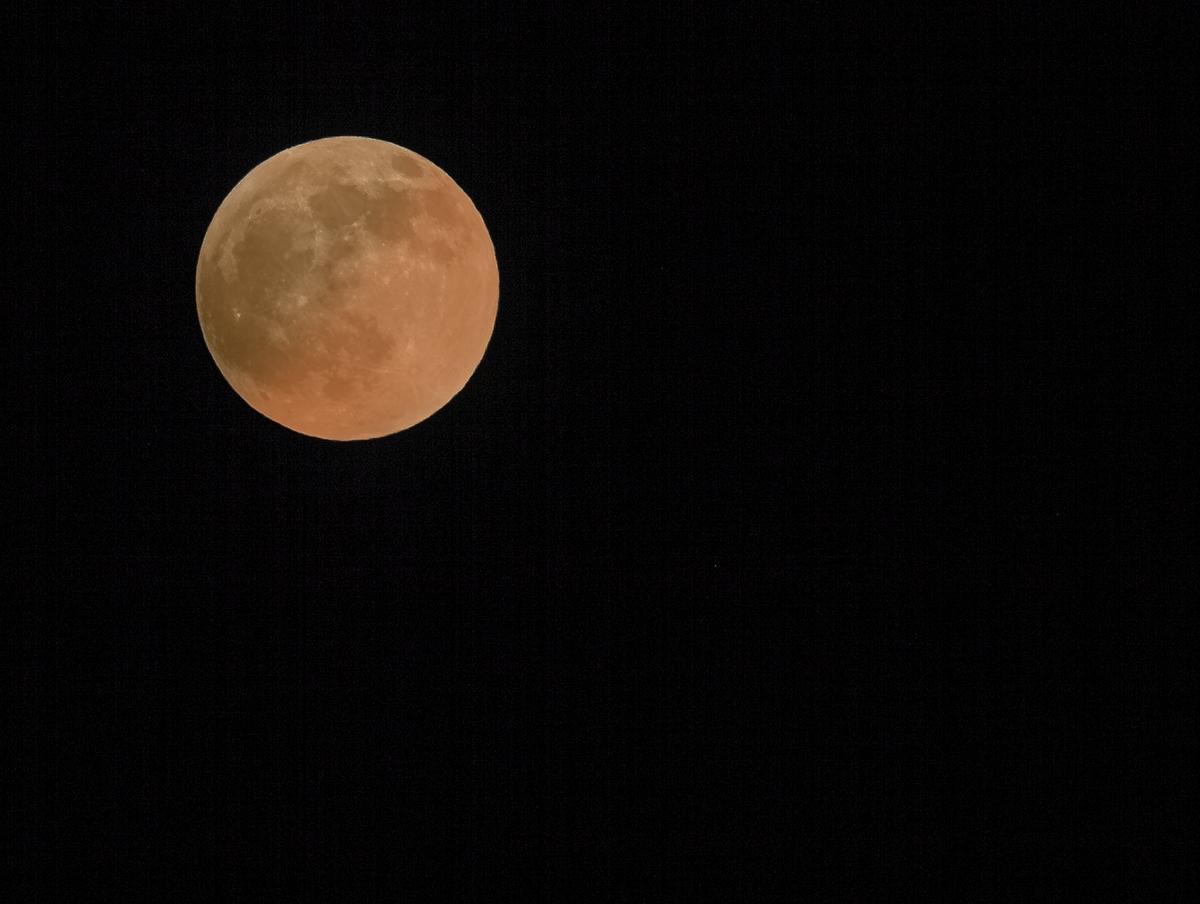 False Eclipse_MG_9033.tif