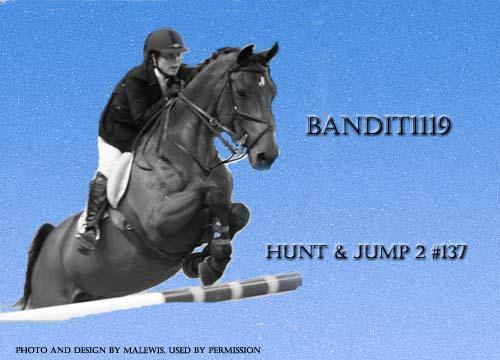 Bandit 2a