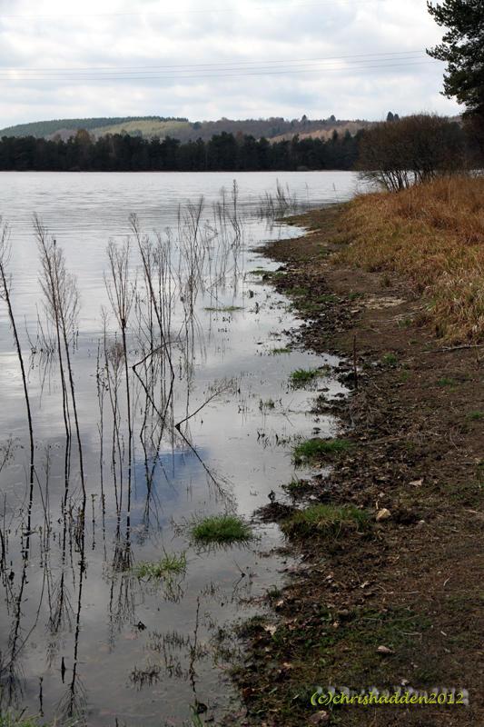 CC #11 - Wet & Dry