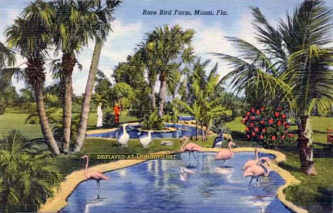 1940s - a postcard featuring the Miami Rare Bird Farm on South Dixie Highway