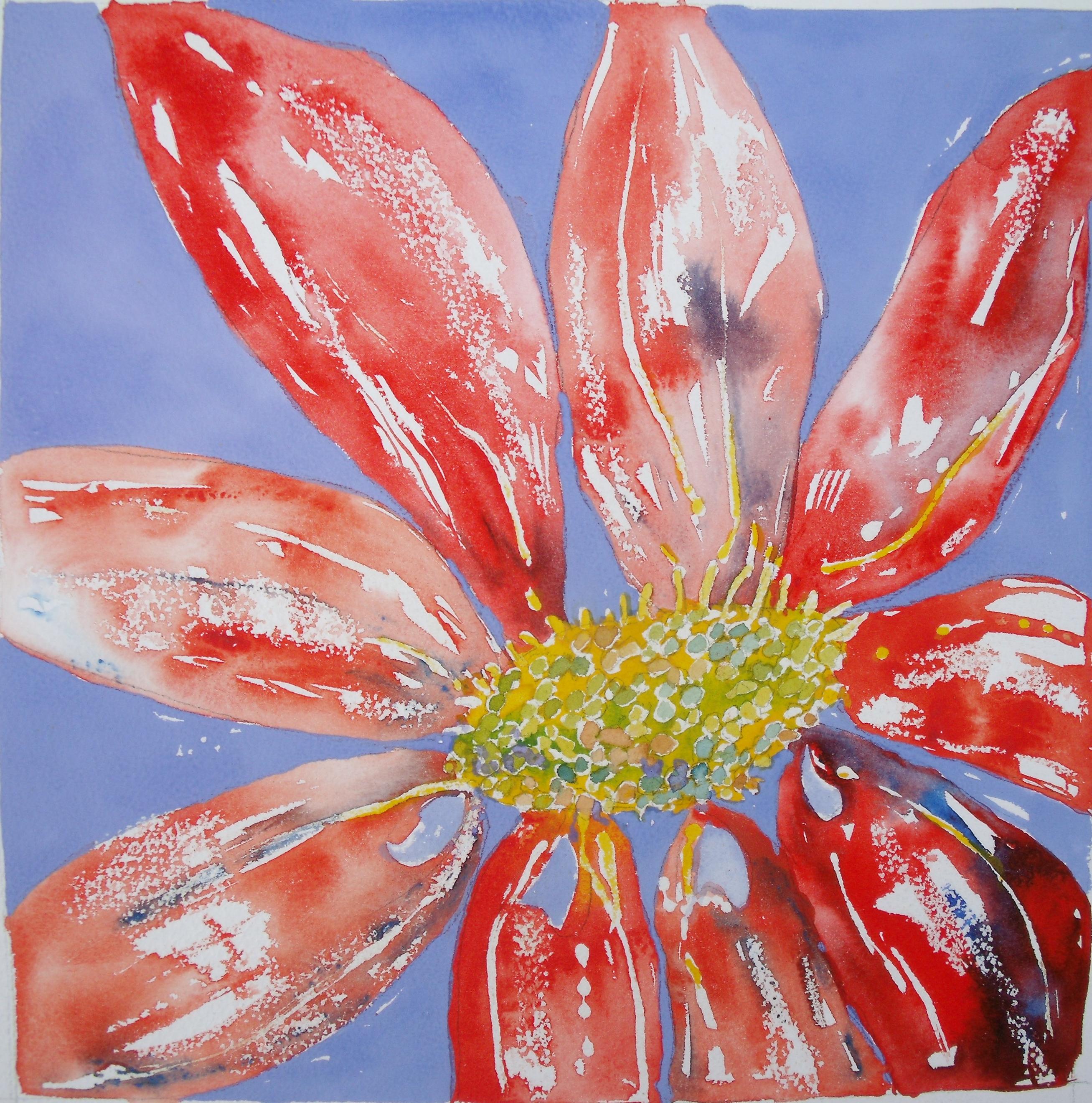 Red Flower -  £80