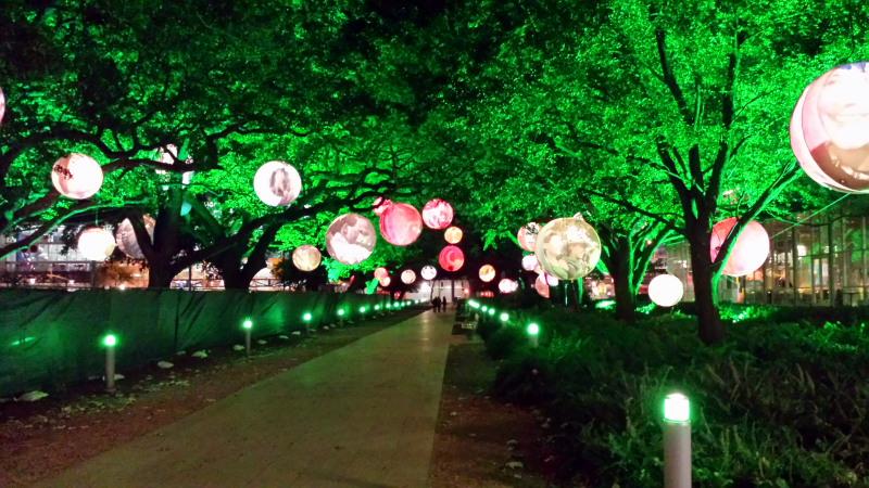 Night decorations, lights on trees