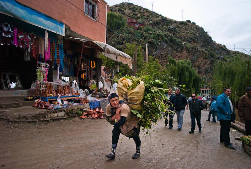 27-Morocco2©ALBERT_ENGELN.jpg