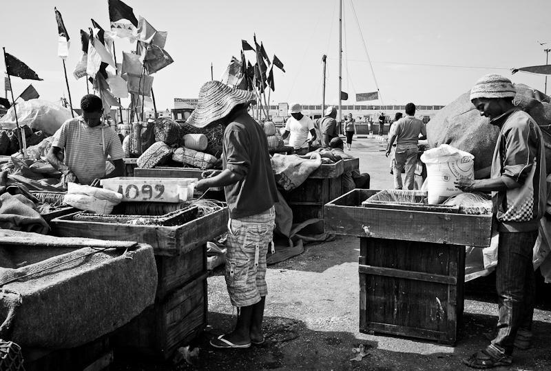 36-Morocco2©ALBERT_ENGELN.jpg