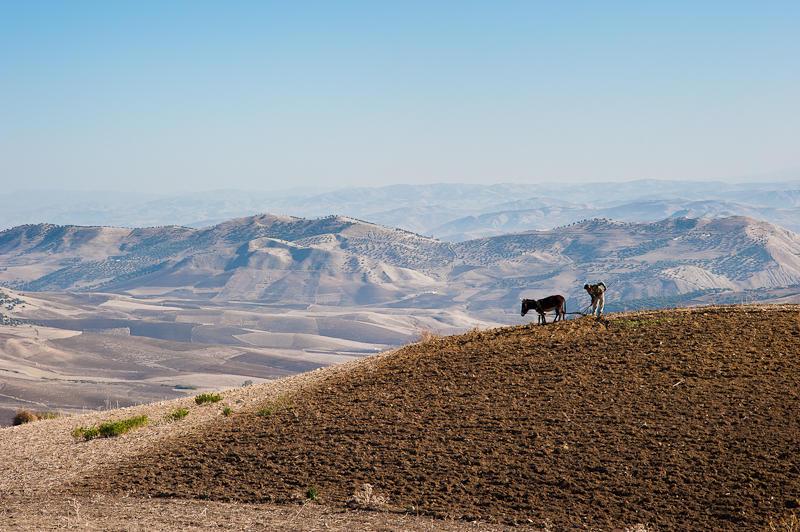 79-Morocco1©Albert_Engeln.jpg