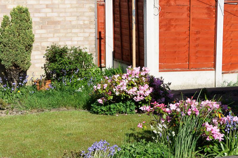 22 May: Garden