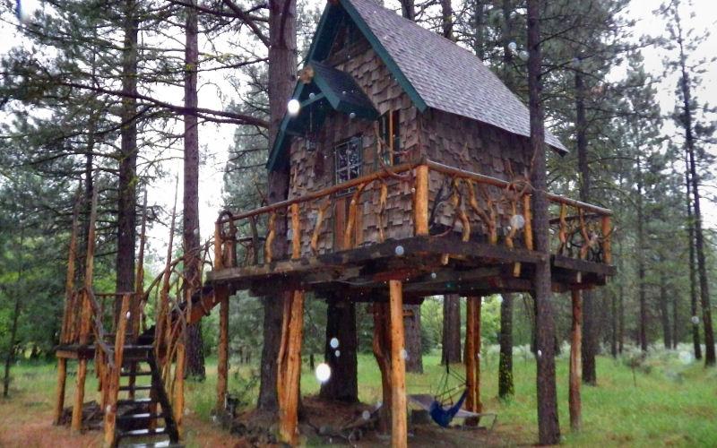 Rainy Treehouse