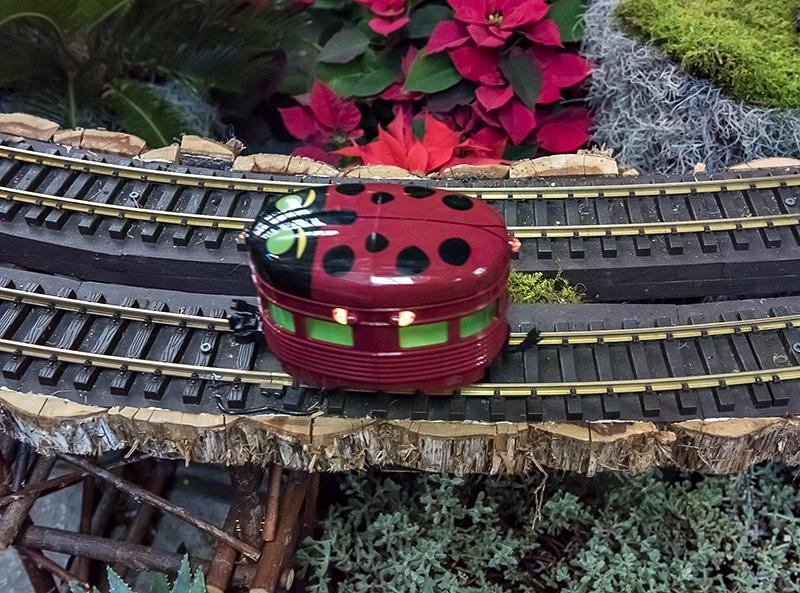 The ladybug train