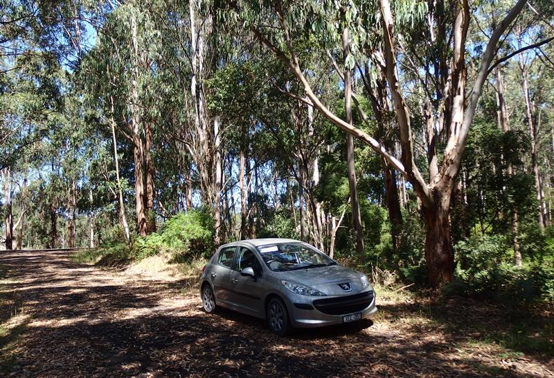 My Peugeot 207 beside the road