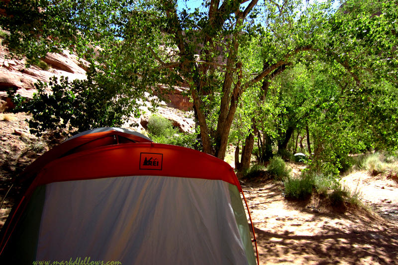 Our Tent among the trees, Primitive camping