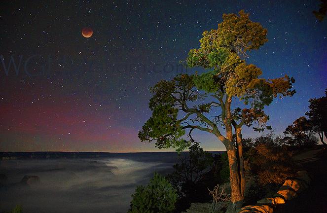 Grand Canyon Starlight